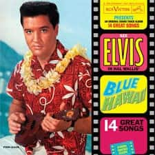citazioni-musicali-libri-stephen-king-elvis_presley-blue-hawaii
